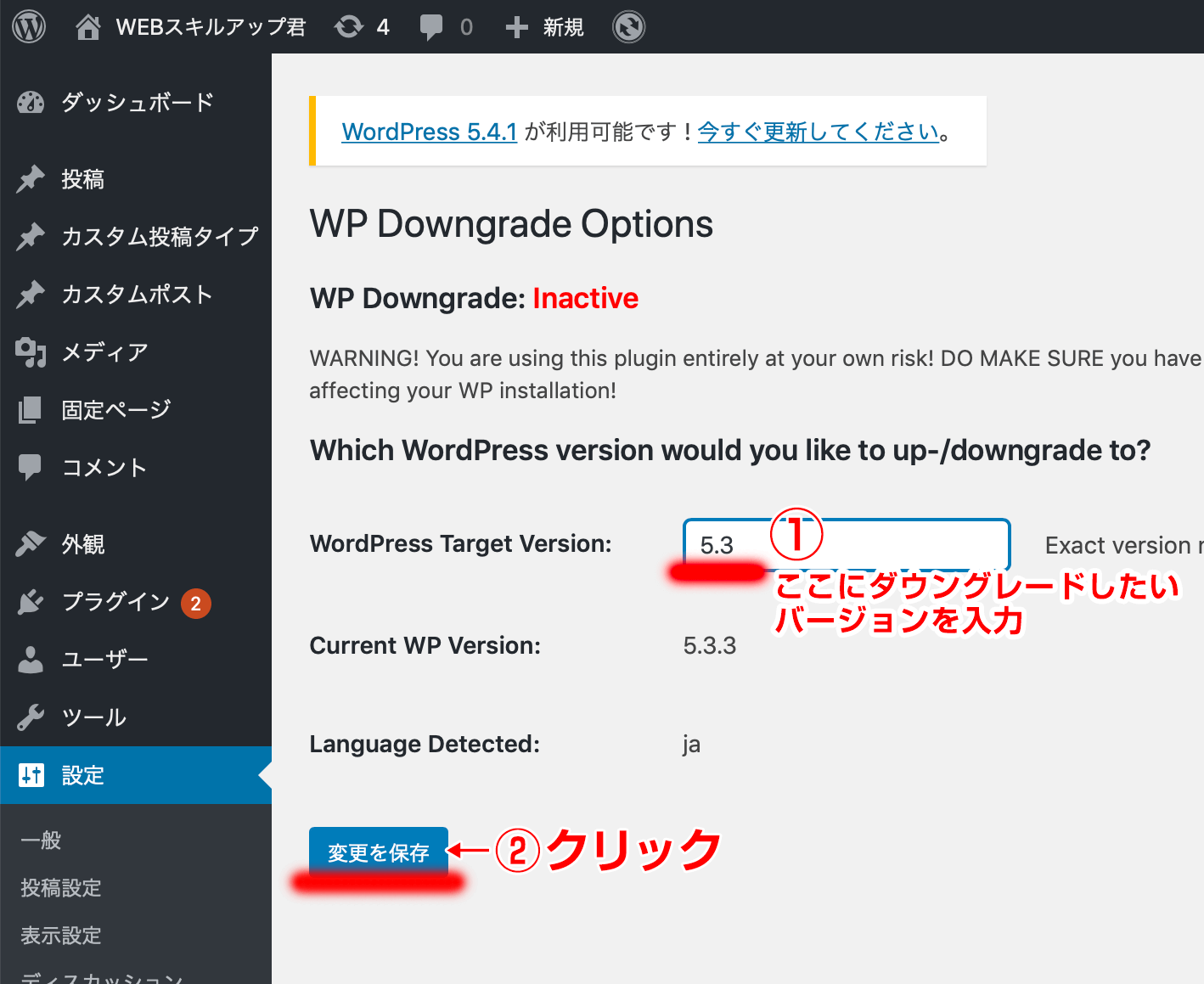 WP Downgrade Options